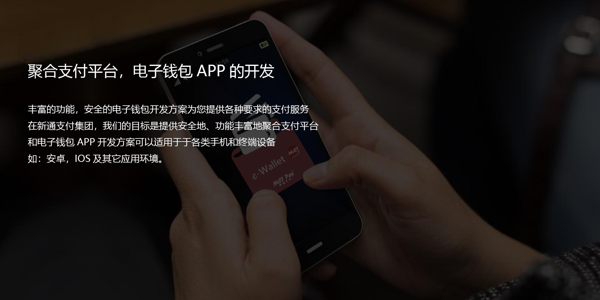 电子钱包,集合支付解决方案的开发